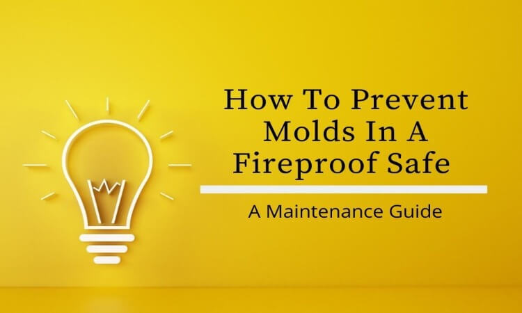 How To Prevent Molds In A Fireproof Safe: A Maintenance Guide
