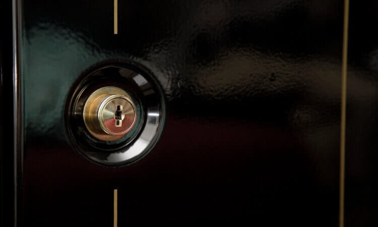 SteelWater Gun Safe Use: A Buyer's Guide