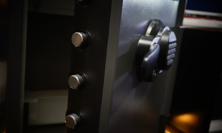 The 5 Best Home Security Safes: Our Top Picks