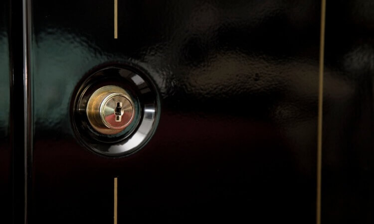 The 5 Best Safes For Your Guns And Documents